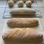 Baguette/Semmel vorgebacken und fertig